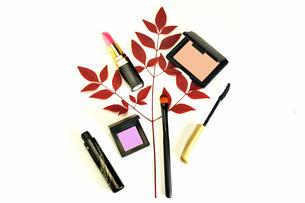散らばった化粧品と赤紫の葉の写真素材 [FYI01239519]