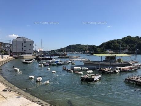 広島県尾道市 港の船の写真素材 [FYI01239679]