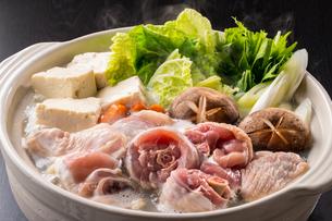 鶏鍋~水炊きの写真素材 [FYI01239750]