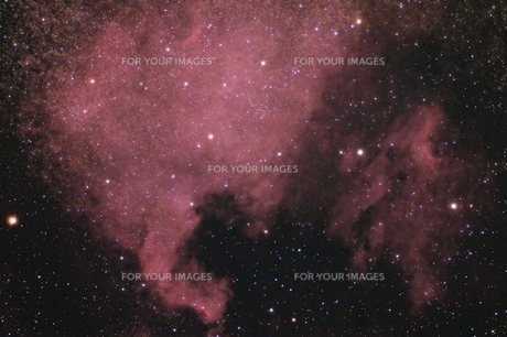 北アメリカ星雲の写真素材 [FYI01239952]