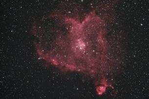ハート星雲の写真素材 [FYI01239953]