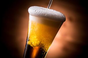 ビールで乾杯の写真素材 [FYI01240004]