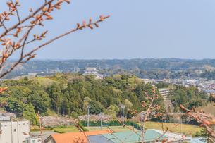 春の大多喜県民の森の展望台から見た風景の写真素材 [FYI01240179]