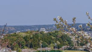 春の大多喜県民の森の展望台から見た風景の写真素材 [FYI01240366]
