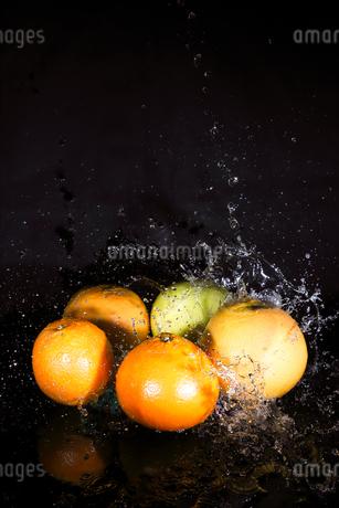 オレンジとグレープフルーツと水飛沫の写真素材 [FYI01240573]