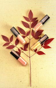 赤紫の葉と散らばったリップブロスの写真素材 [FYI01240744]
