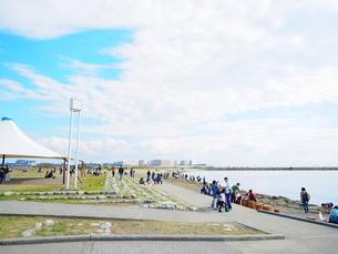葛西臨海公園 汐風の広場ゾーンの写真素材 [FYI01241074]