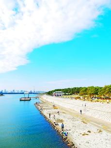 葛西臨海公園 汐風の広場ゾーンの写真素材 [FYI01241077]
