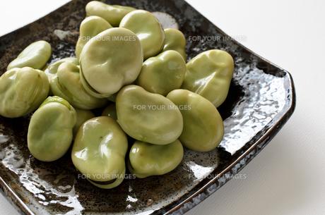 そら豆の写真素材 [FYI01241162]