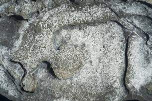 岩の表面の形状の写真素材 [FYI01241412]