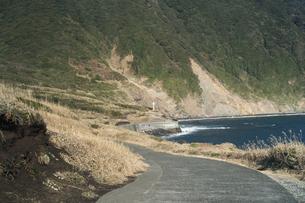 伊豆大島のオタイネの碑にある白い十字架の写真素材 [FYI01241413]