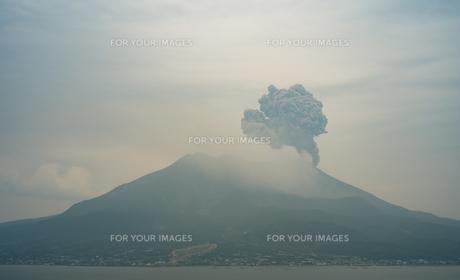 桜島が爆発したところの写真素材 [FYI01241426]