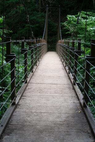 高尾山のみやまはしという吊り橋の写真素材 [FYI01241432]