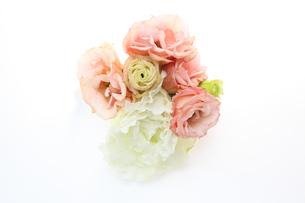 トルコキキョウの花束の写真素材 [FYI01241469]