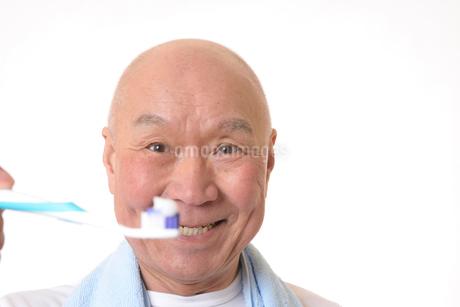 歯を磨く日本人シニアの写真素材 [FYI01241571]