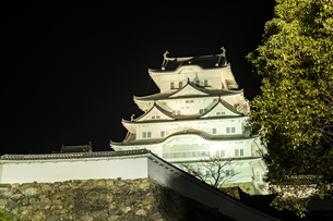 夜の姫路城の写真素材 [FYI01241655]