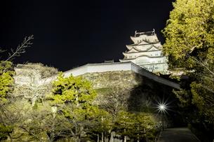 夜の姫路城の写真素材 [FYI01241656]