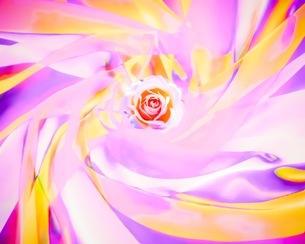 花の写真素材 [FYI01241741]