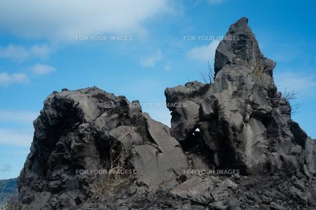 桜島の火山岩の写真素材 [FYI01241854]