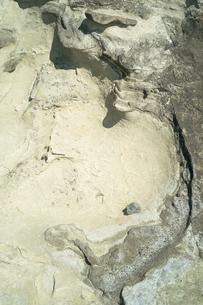 海岸の岩の写真素材 [FYI01241938]