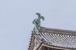 春の松江城のシャチホコの風景の写真素材 [FYI01241963]