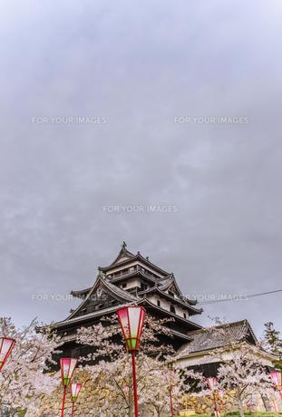 春の松江城の風景の写真素材 [FYI01241968]