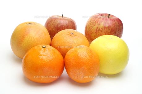 リンゴ,オレンジとグレープフルーツの写真素材 [FYI01241983]