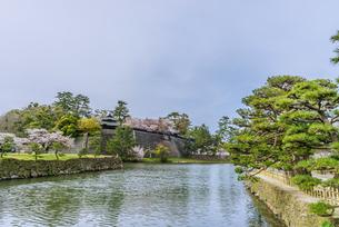 春の松江城の風景の写真素材 [FYI01242065]