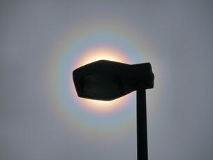 街路灯で太陽を隠した花粉光環の写真素材 [FYI01242376]