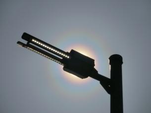 細長い街路灯で太陽を隠した花粉光環の写真素材 [FYI01242392]
