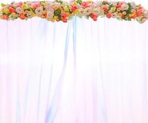 花の写真素材 [FYI01242467]