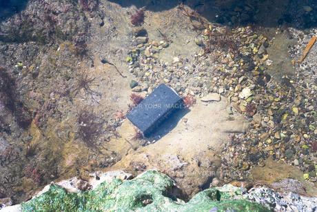 海に落としてしまった物の写真素材 [FYI01242501]