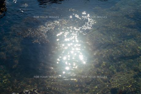 光線が水面で反射しているの写真素材 [FYI01242503]