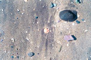 オレンジと紫の貝殻と石が砂浜にあるの写真素材 [FYI01242516]