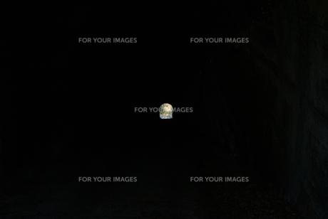 トンネルの出口、もしくは入り口の写真素材 [FYI01242529]