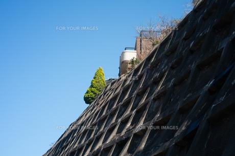 崖の上に建てられた家と木の写真素材 [FYI01242560]