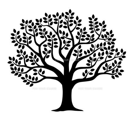 葉の生い茂る木のシルエットのイラスト素材 [FYI01242641]
