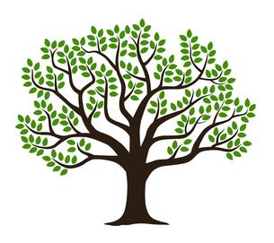 葉の生い茂る木のシルエットのイラスト素材 [FYI01242642]