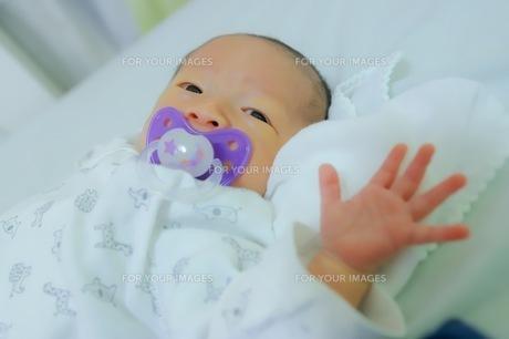 おしゃぶりをしている赤ちゃんの素材の写真素材 [FYI01242784]