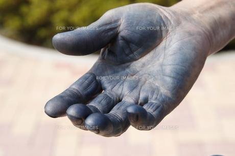 藍染の手のアップの写真素材 [FYI01243005]
