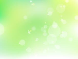 新緑と光のイメージ 背景素材のイラスト素材 [FYI01243038]