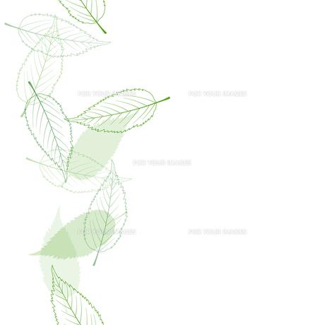 葉 シームレス背景素材のイラスト素材 [FYI01243056]