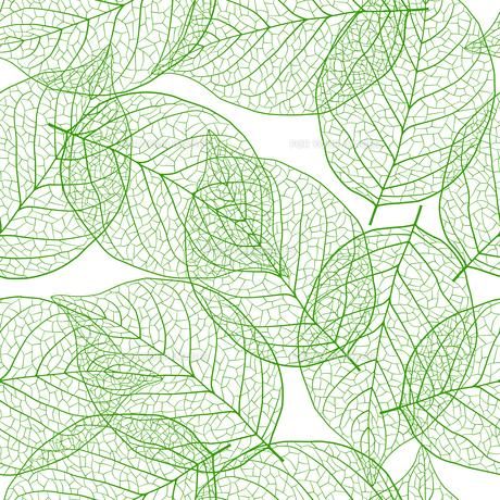 新緑の葉 シームレス背景素材のイラスト素材 [FYI01243058]
