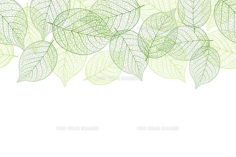 新緑の葉 シームレス背景素材のイラスト素材 [FYI01243059]