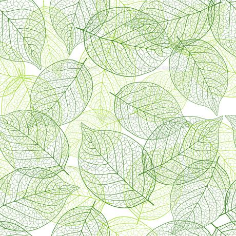 新緑の葉 シームレス背景素材のイラスト素材 [FYI01243060]