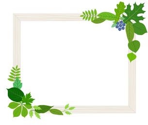 葉をあしらった木製の額縁のイラスト素材 [FYI01243065]