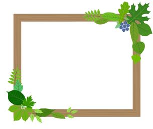 葉をあしらった木製の額縁のイラスト素材 [FYI01243066]
