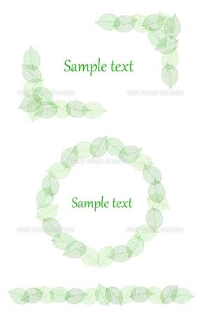 葉 装飾フレーム素材のイラスト素材 [FYI01243069]