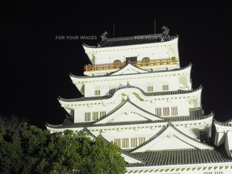 夜の福山城の様子の写真素材 [FYI01243276]
