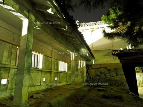 夜の福山城の様子の写真素材 [FYI01243277]